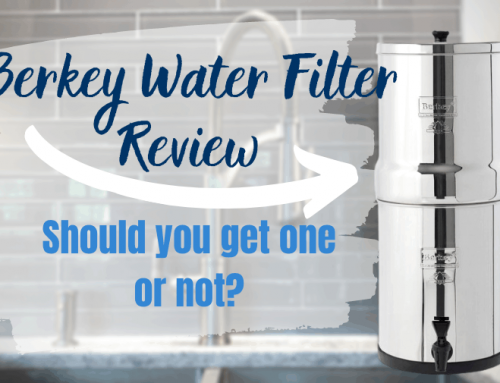 Berkey Water Filter Review: Should You Get One or Not?
